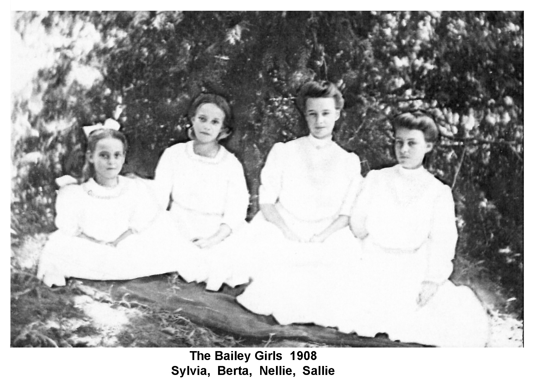 The Bailey Girls 1908